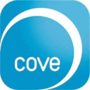Coveidentity ico