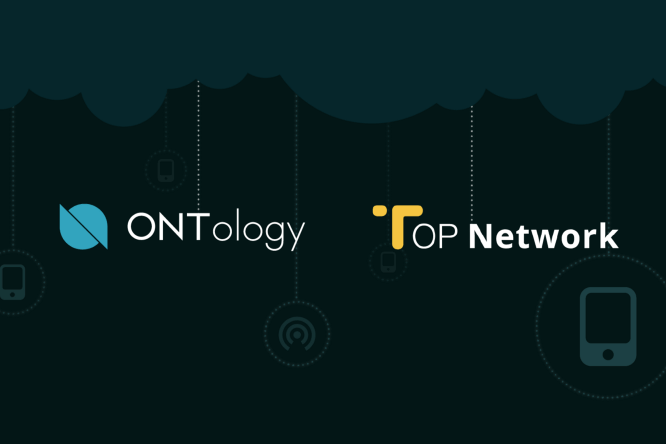 Ontology top network