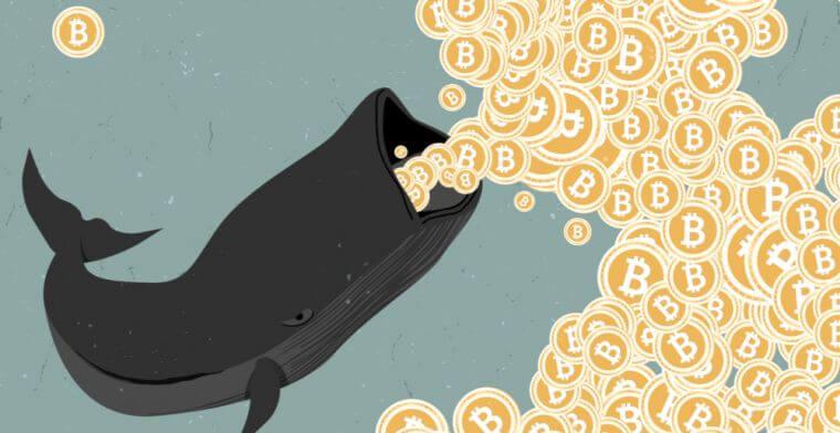 Bitcoin_BTC