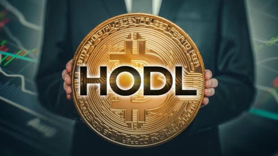 Hodl bitcoin