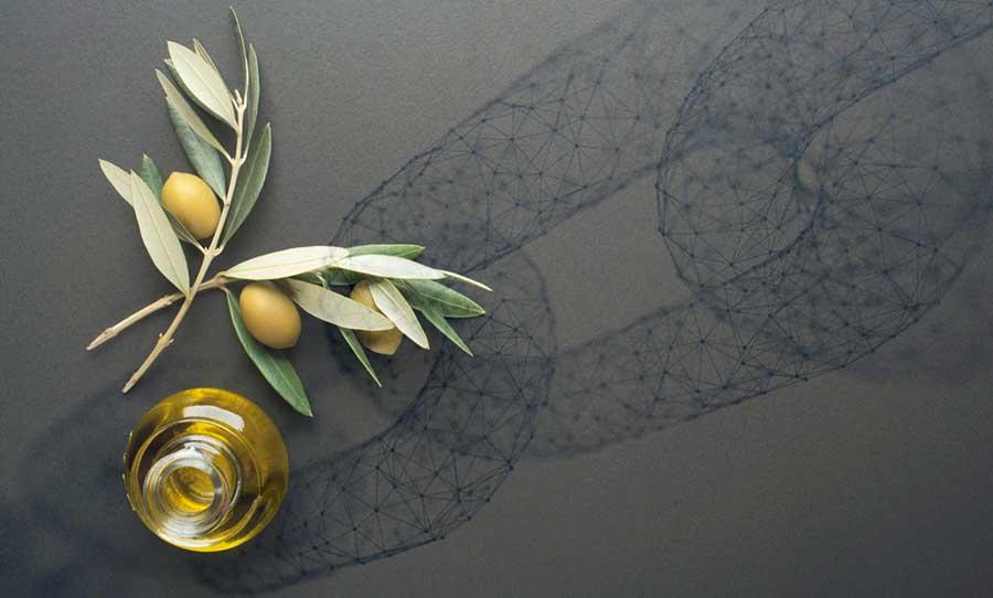 blockchain-olive-oil