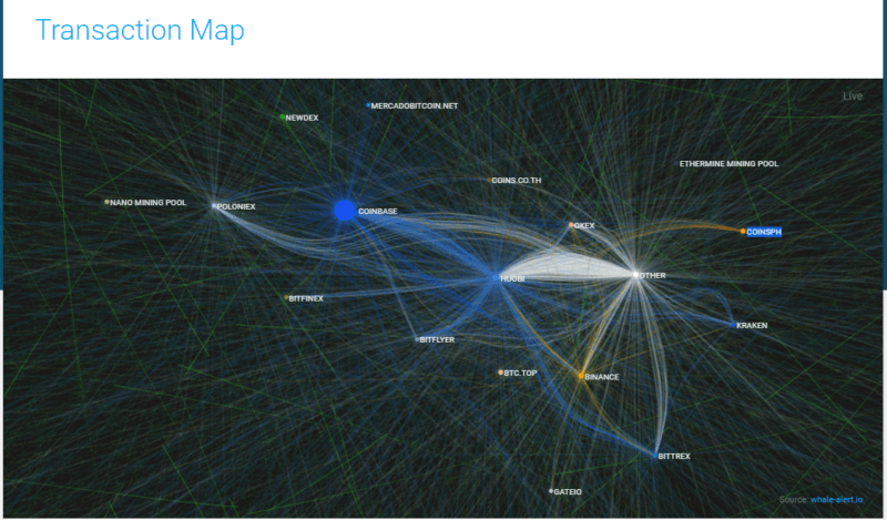 whale-alert visualizations