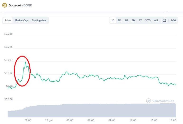 Обновлённый профиль Илона Маска в Твиттере поднял цену DOGE на 10%