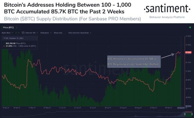 Покупки криптокитов и розничных инвесторов двигают цену биткоина к $60000
